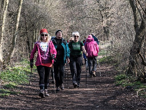 Over 50s - Nordic Walking